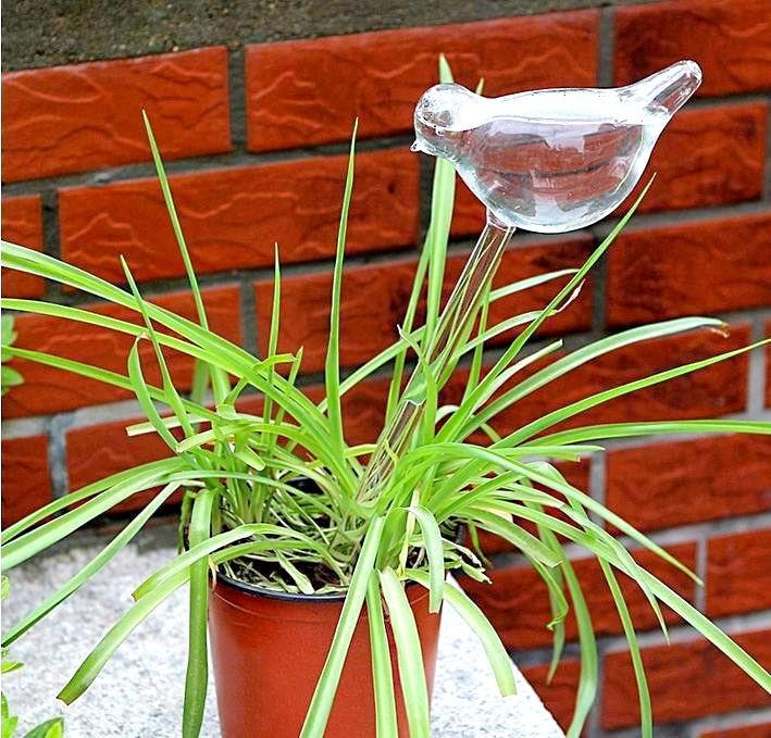 Декоративная колба для автополива комнатного растения