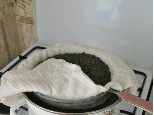 Пропаривание грунта для профилактики паутинного клеща