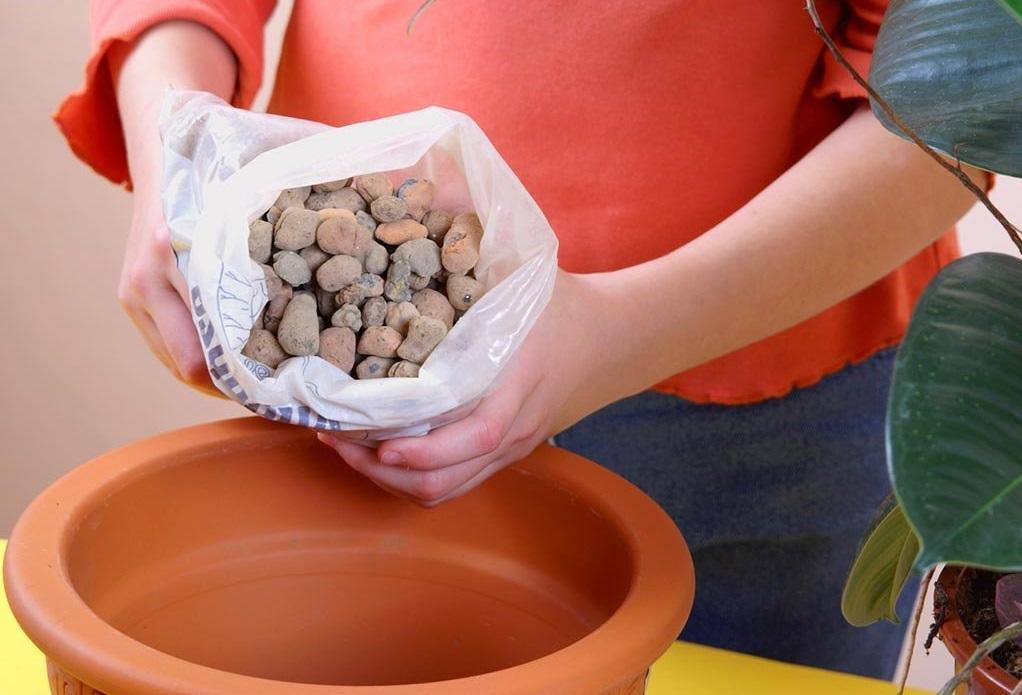 Девушка готовит почву под посадку