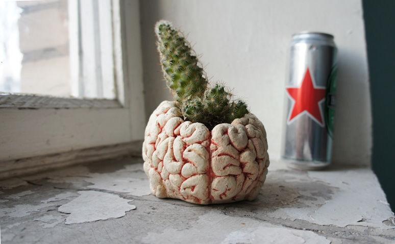 """Горшок-кашпо для кактуса """"Мозг"""""""