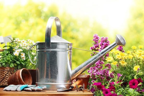 Лейка для домашних растений
