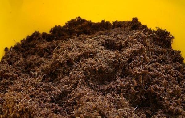 Подготовленная почва для цветка