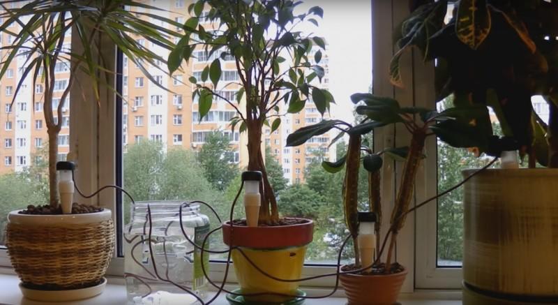 Керамические конусы для полива цветов