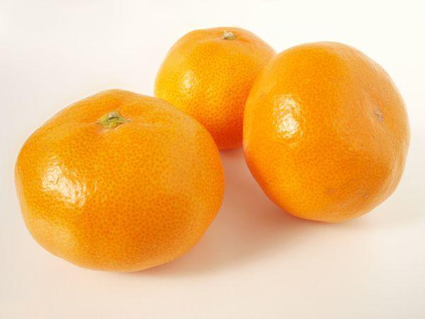 Сбор урожая цитрусовых происходит в октябре