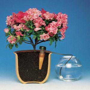 Система автоматического полива растения