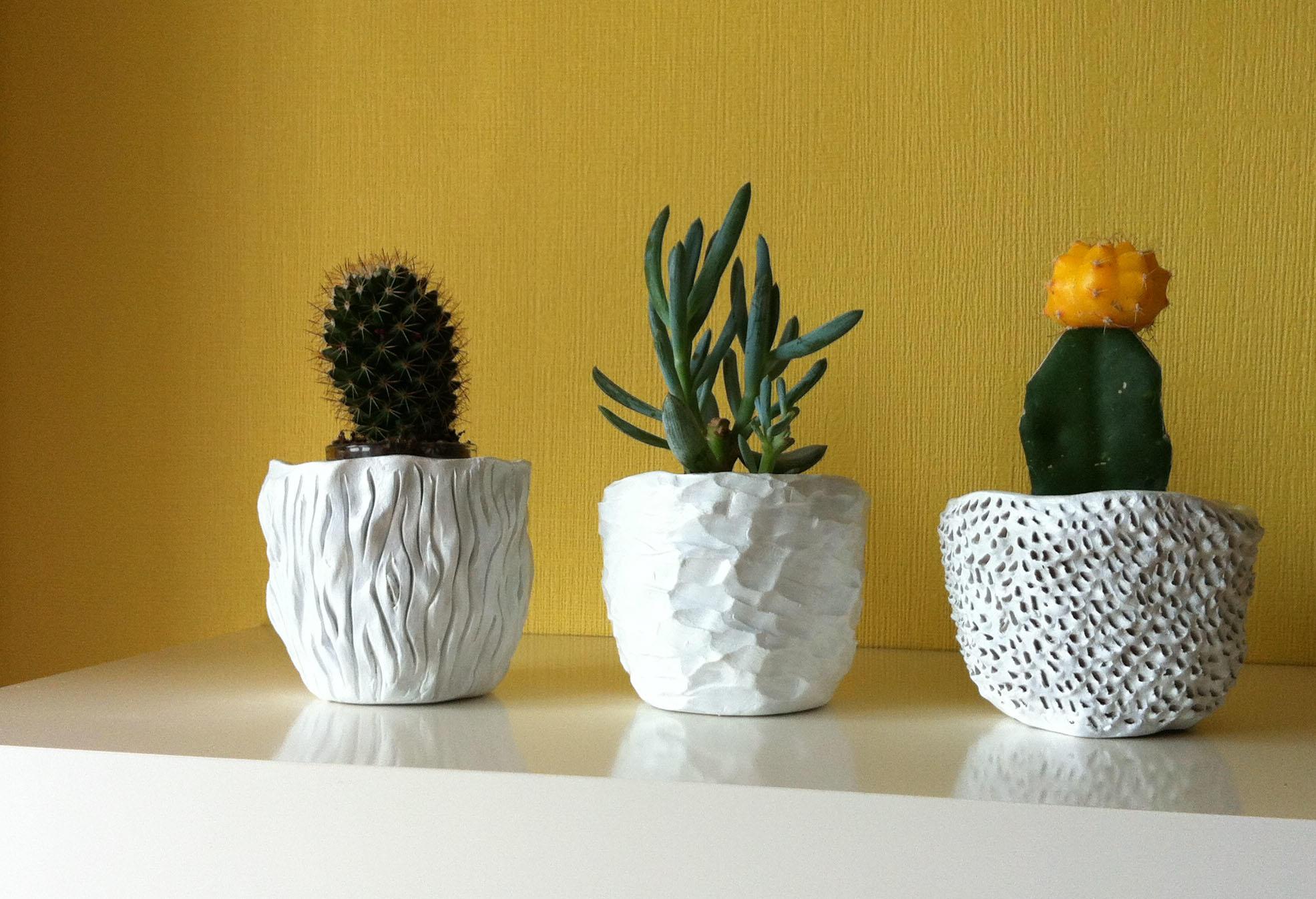 Кактусы в красивых глиняных горшках