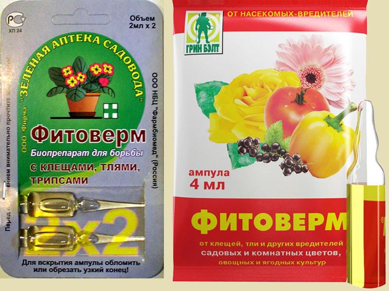 Обработка фитовермом комнатных растений