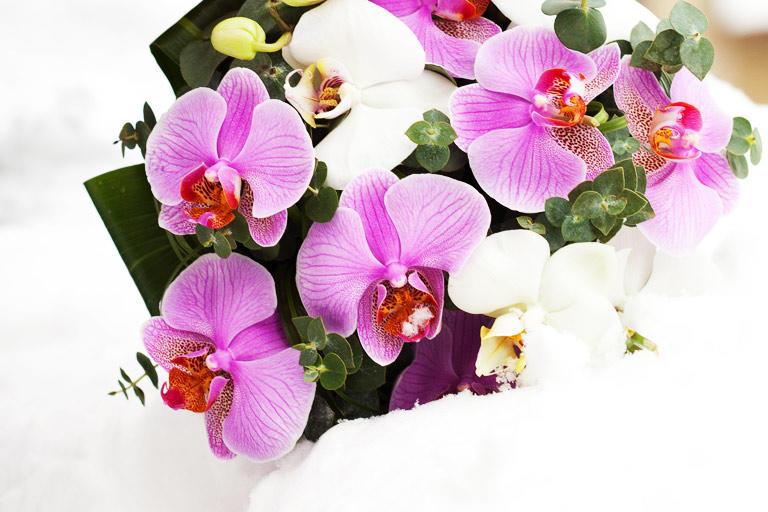 Букет из белых и фиолетовых орхидей
