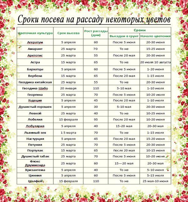 Календарь посадки цветов